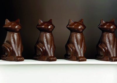 chocolateria_asseama_gato2
